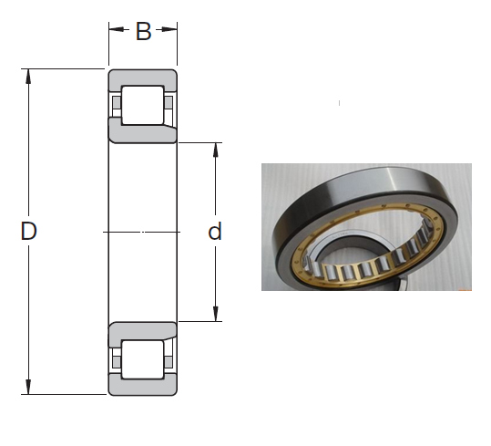 NJ 308 ECJ Cylindrical Roller Bearings 40*90*23mm