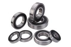 6007-2rs stainless steel deep groove ball bearing