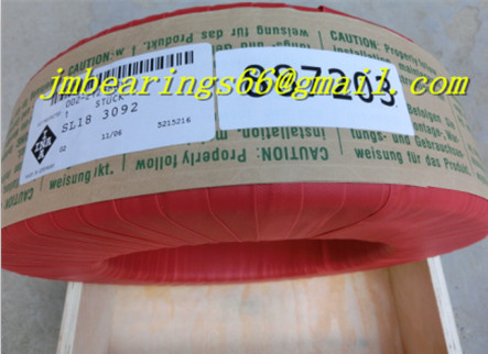 SL04 5024 PP 2NR Full Complement Cylindrical Roller Bearing 120x180x80mm