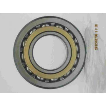7313 BM Angular Contact Ball Bearing