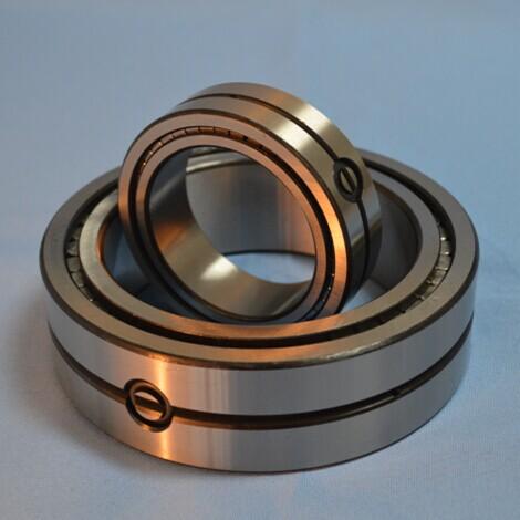 SL014920 locating bearings