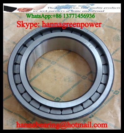 SL182936 Full Complement Cylindrical Roller Bearing 180x250x42mm
