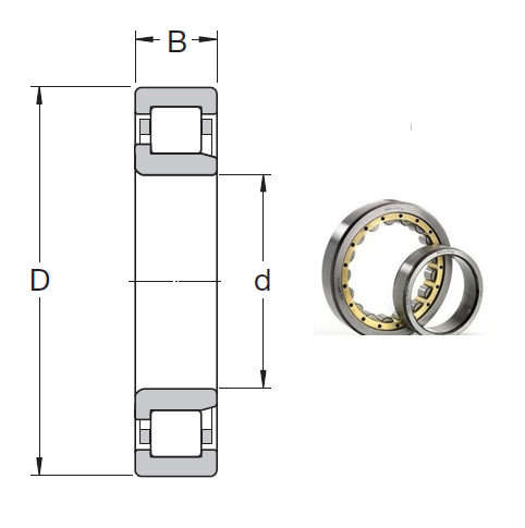 NJ 2311 ECML Cylindrical Roller Bearings 55*120*43mm