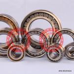 SL045030PP(NNF 5030 ADA-2LSV) bearing