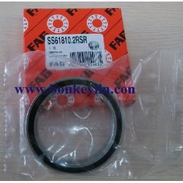SS61810 2RS bearing