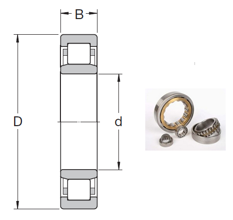 NU 1060 MA Cylindrical Roller Bearings 300*460*74mm