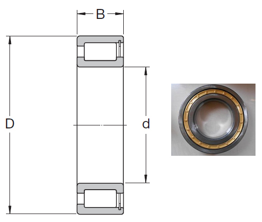 NCF 18/800 V Cylindrical Roller Bearings 800*980*82mm