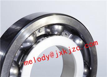 6022/C3J20C insulated bearing