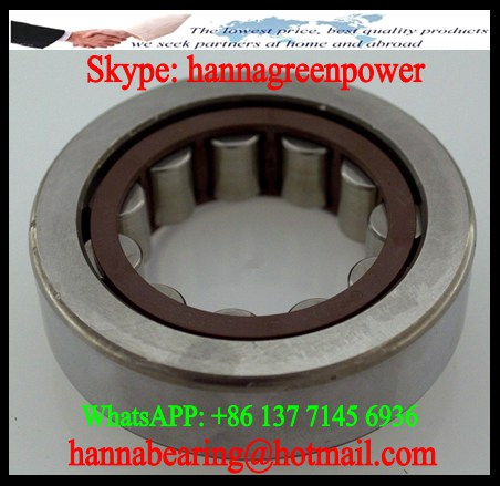 292209E Cylindrical Roller Bearing 54.5x85x19mm