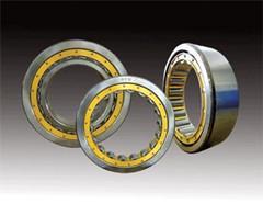 Short cylindrical roller bearing NU1009M