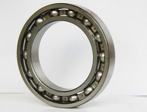 6022.C3 bearings 110×170×28mm