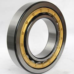 NU220 Cylindrical roller bearing 100x180x34mm