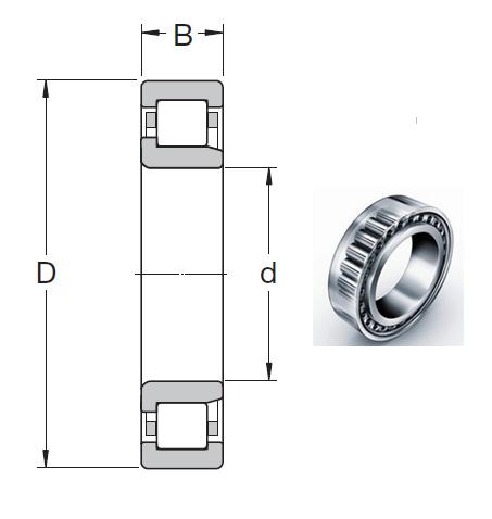 NJ 224 ECP Cylindrical Roller Bearings 120*215*40mm