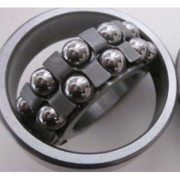 1315 Self Aligning Ball Bearing