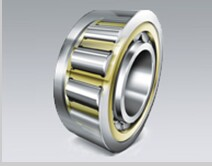 NU 2938Q1/S0 Cylindrical Roller Bearing 190x260x42mm