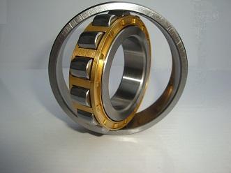 20209 bearing