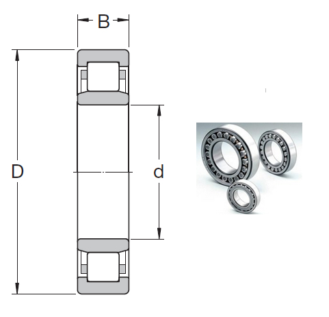 NU 1013 ECP Cylindrical Roller Bearings 65*100*18mm