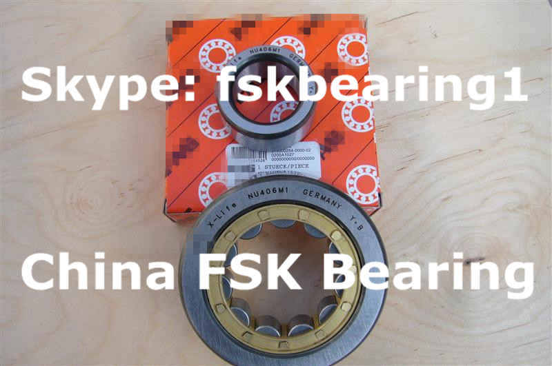 558320 Cylindrical Roller Bearing