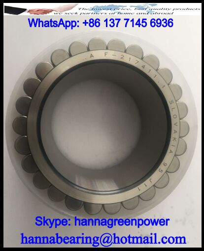 F-217411.01.RNN Cylindrical Roller Bearing For Volvo 65x93.1x55mm