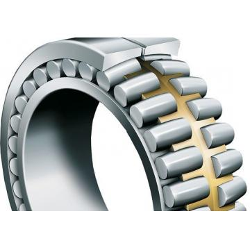 N204 Cylindrical roller bearing