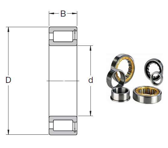 NCF 28/850 V Cylindrical Roller Bearings 850*1030*106mm