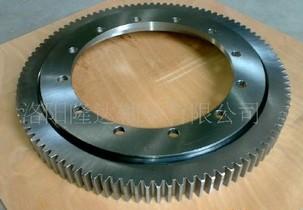 RK6-16E1Z External Gear Teeth Slewing Bearing