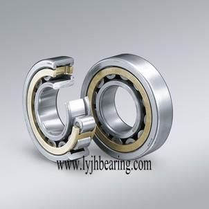 N1016-K-PVPA-SP bearing 80x125x22mm