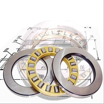 81224 Cylindrical Roller Thrust Bearing
