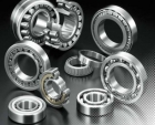 81120 TN Cylindrical Roller Thrust Bearings