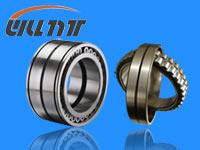 NK 17/20 bearing 17×25×20mm