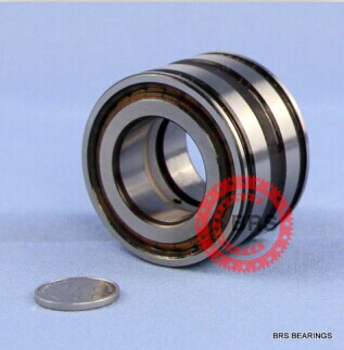 SL045005PP Double-Row Full Complement Cylindrical Roller Bearing