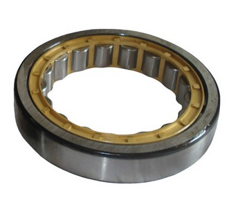 NU2204E Cylindrical roller bearing 20x47x18mm