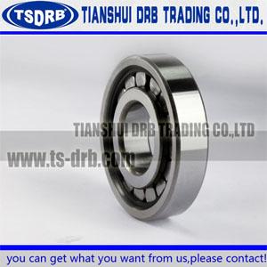 N224E cylindrical roller bearing