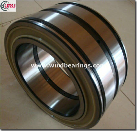 SL045017PP Full Complement Cylindrical Roller Bearing