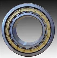 NU3060 Cylindrical roller bearing 300x460x118 mm