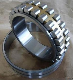NN3006 bearing