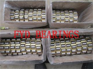 RN203M FYD cylindrical roller bearing 502203H 17×33.9×12mm
