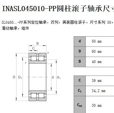 SL045010-PP cylindrical roller bearing