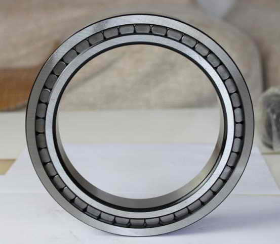 SL185006 bearing