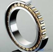 N1024-K-PVPA-SP bearing 120x180x28mm
