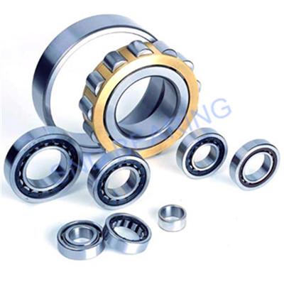 N2344EM/P6 bearing 220x460x145mm