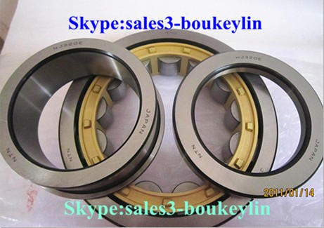 NFP38/600X2 Cylindrical Roller Bearing 600x730x90mm