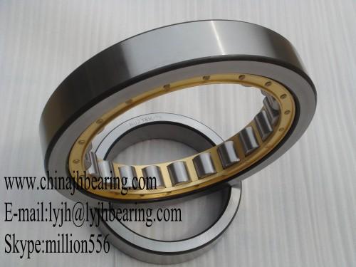 N1096-K-M1-SP bearing 480x700x100 mm