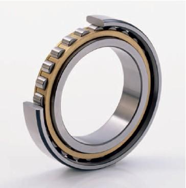 HCN1022-K-PVPA-SP-H193 bearing 110x170x28mm