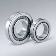 SL 192320 bearing
