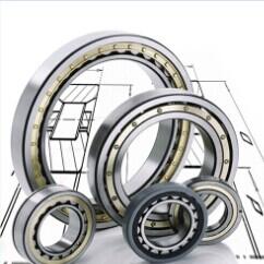 3004264 bearing 320X580X208mm
