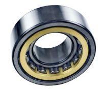 NUP203 bearing