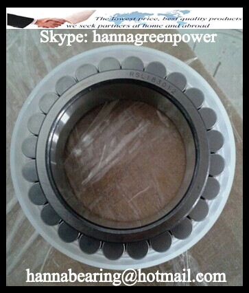 RSL18 3006 Full Complement Cylindrical Roller Bearing (Without Cup) 30x49.6x19mm