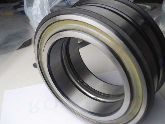 SL04 5024-PP-2NR Full Complement Cylindrical Roller Bearings