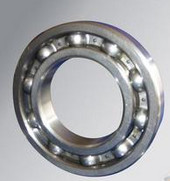 6005 bearing